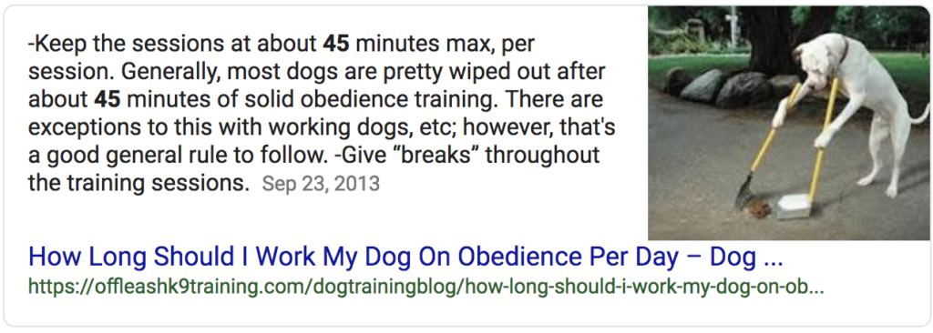 Screenshot of a paragraph featured snippet with a dog cleaning