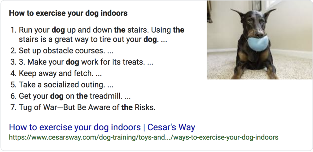 Screenshot of a list featured snippet of a dog with a chew toy