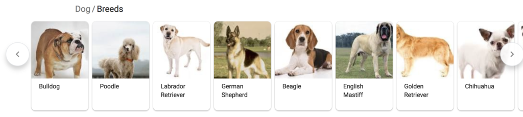 Screenshot of a card featured snippet showing the different breeds of dogs