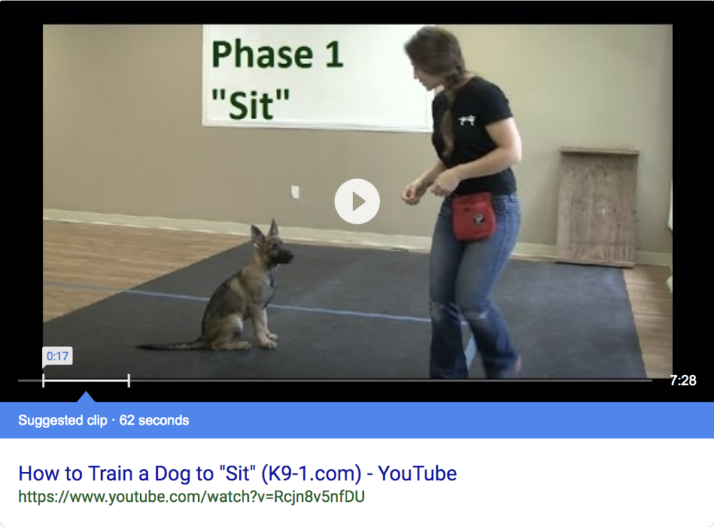 Screenshot of a YouTube featured snippet with a dog and its trainer